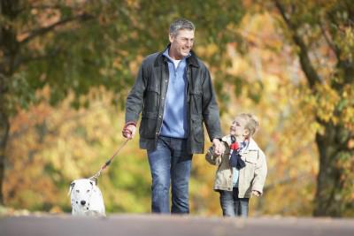 Dog Park and Dog Walking