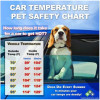 Hot Weather Pet Tips